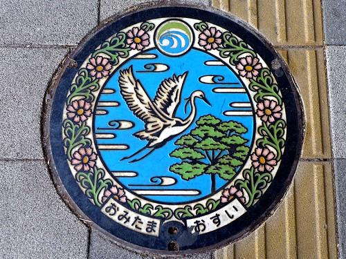 Omitama Ibaraki, manhole cover (茨城県小美玉市のマンホール)