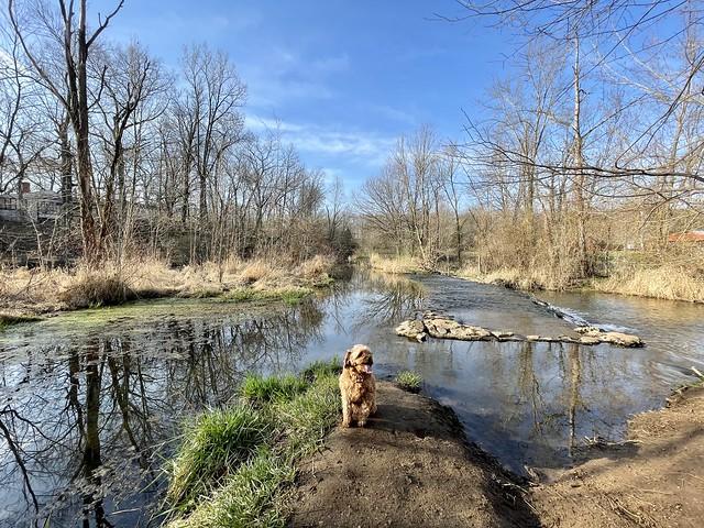 Springtime at Bonneyville Mill (2)