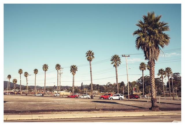 Santa Cruz life