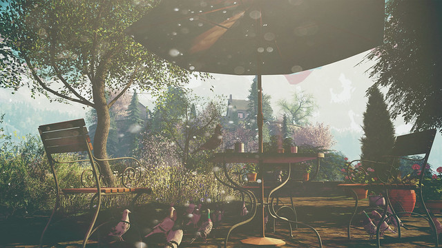 Landscapes Unlimited 50K Contest - Entry 1 - Zia Kaplan
