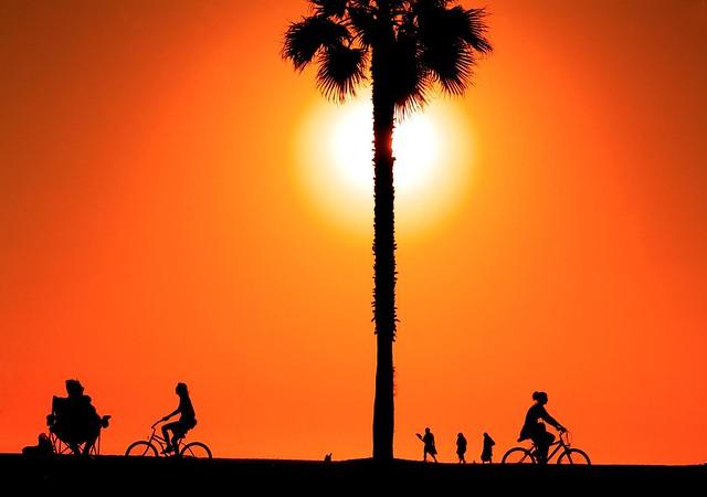 #venicebeach #silhouette #beachlife