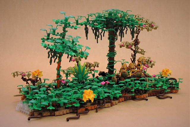 Journey through the jungle