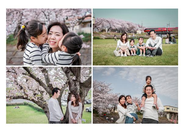 桜の季節に公園でファミリーフォト