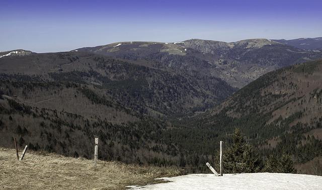 Au loin le Hohneck, pas dans les 10 km