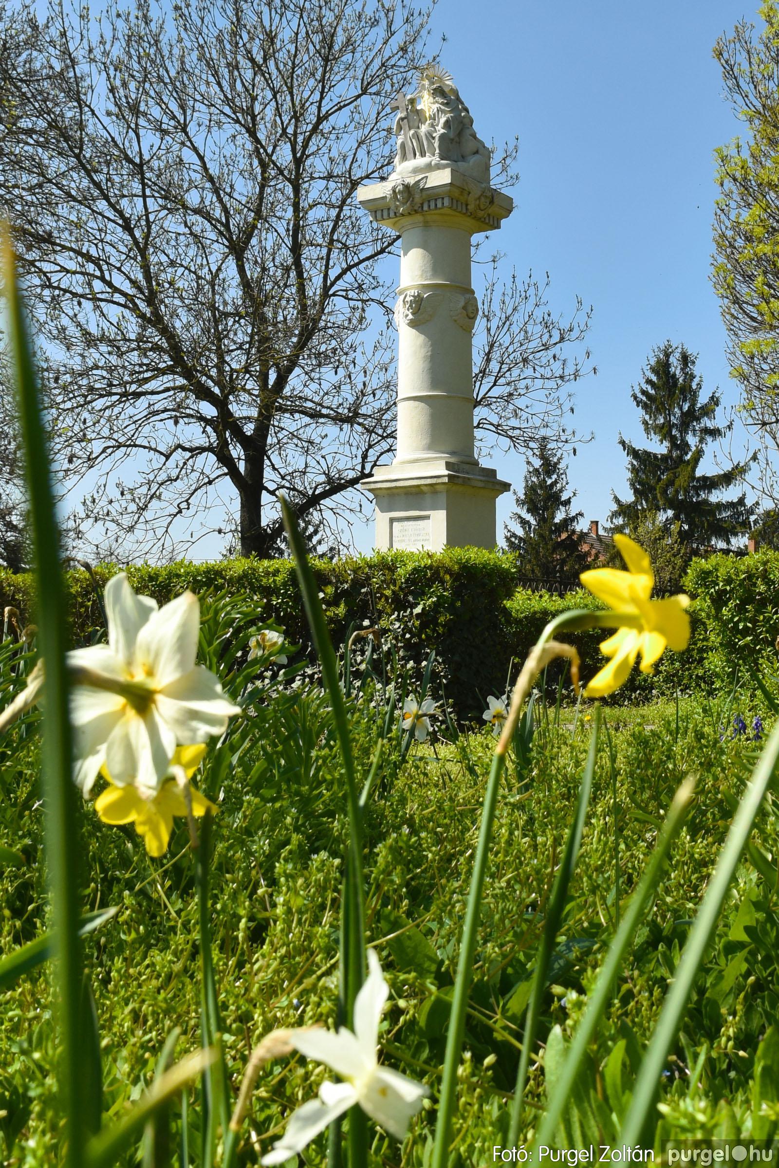 2021.04.24. 010 Tavaszi körkép - DSC_4278q - Fotó:PURGEL ZOLTÁN©.jpg
