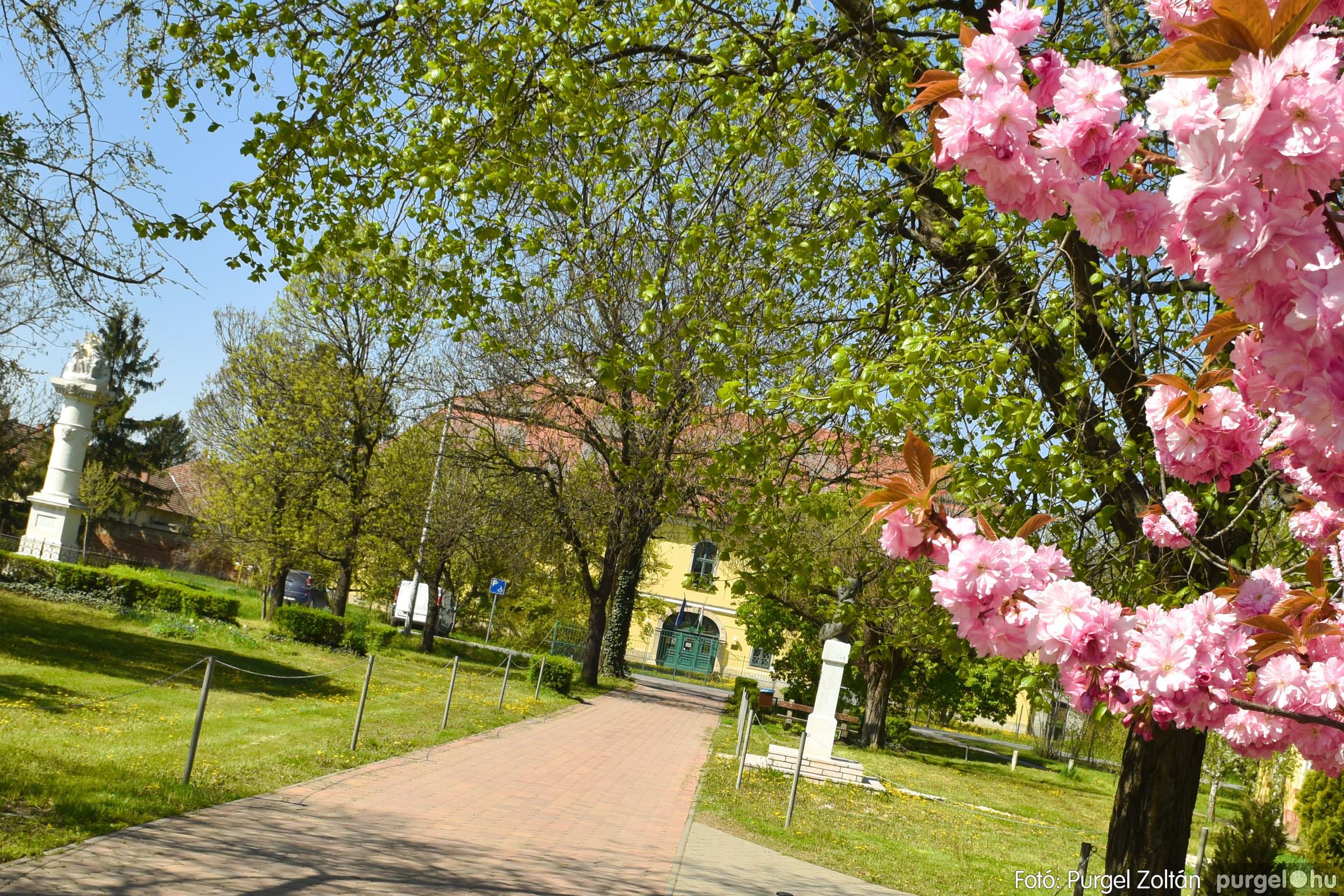 2021.04.24. 003 Tavaszi körkép - DSC_4227q - Fotó:PURGEL ZOLTÁN©.jpg