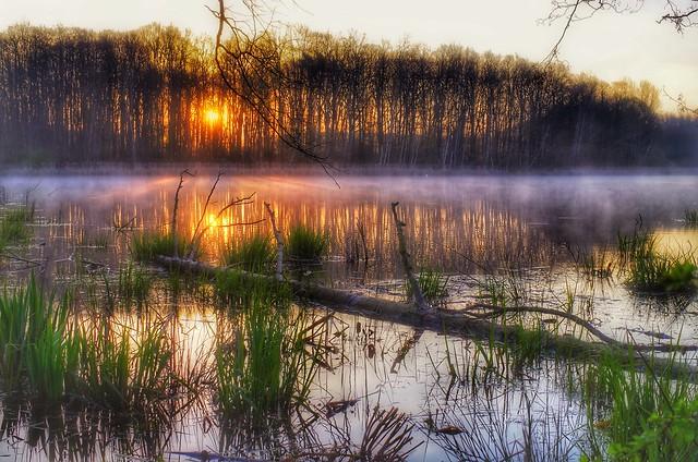 When nature awakens from its sleeping beauty/Wenn die Natur aus ihrem Dornröschenschlaf erwacht