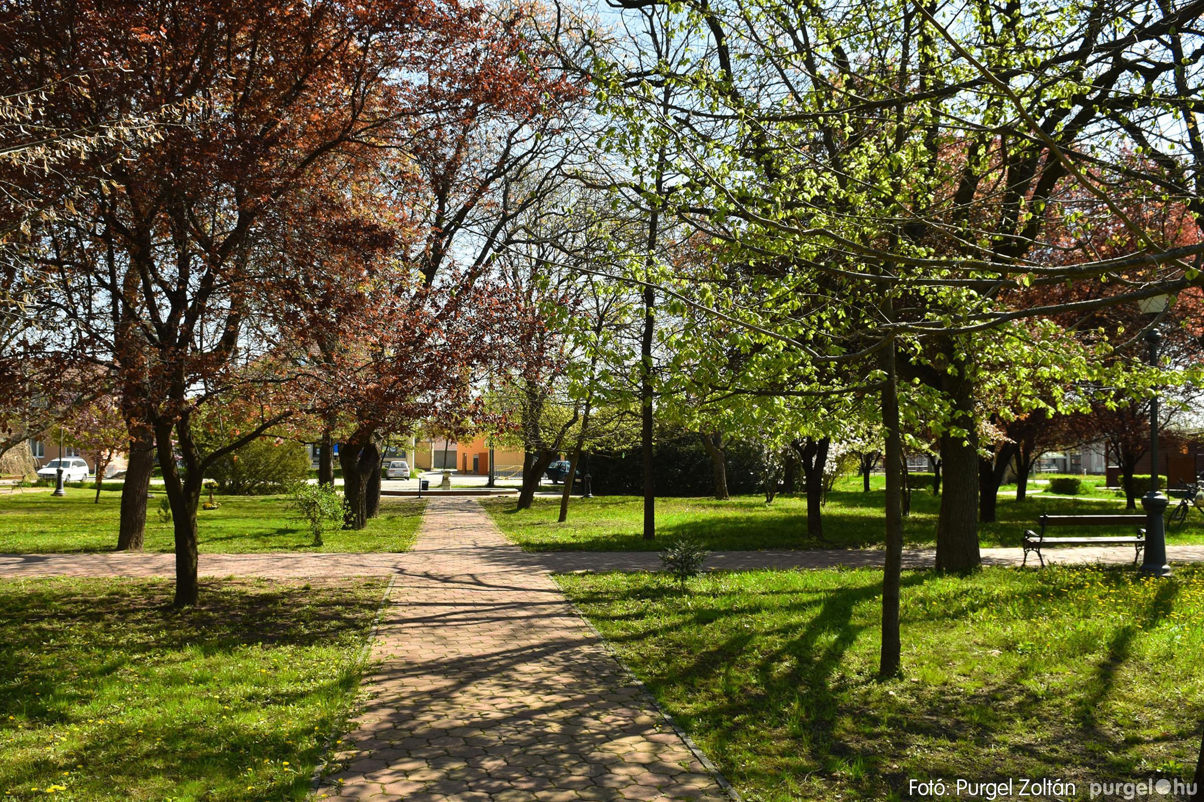 2021.04.24. 020 Tavaszi körkép - DSC_4307q - Fotó:PURGEL ZOLTÁN©.jpg