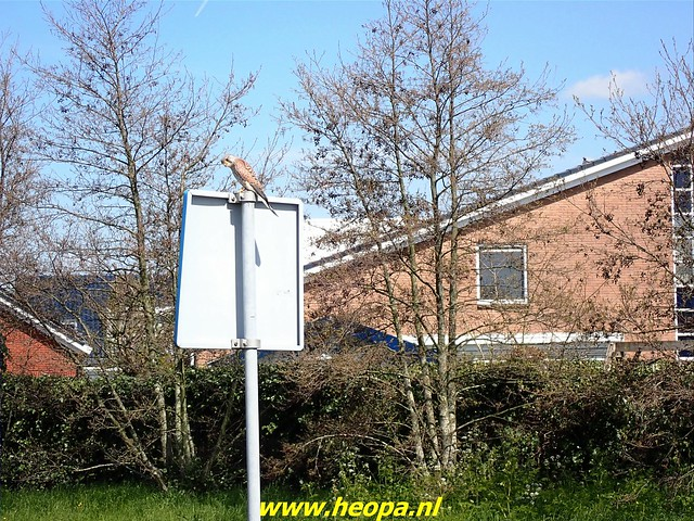 2021-04-23  Zoetermeer Rs80 serie nr10   (68)