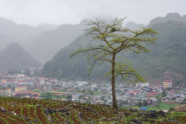 _Y2U6767.0421.Thị trấn Mèo Vạc.Hà Giang