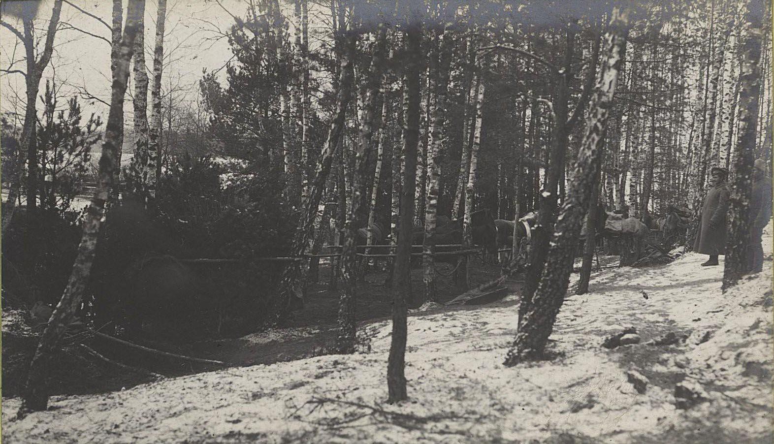 88. Скрытые в лесу передки 21-ой артиллерийской бригады на передовых позициях у деревни Мыслеборж