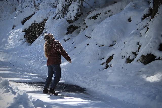 Se rafraichir sous la neige qui tombe des arbres