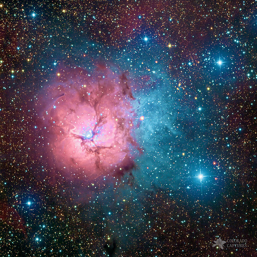 M20 - Trifid Nebula