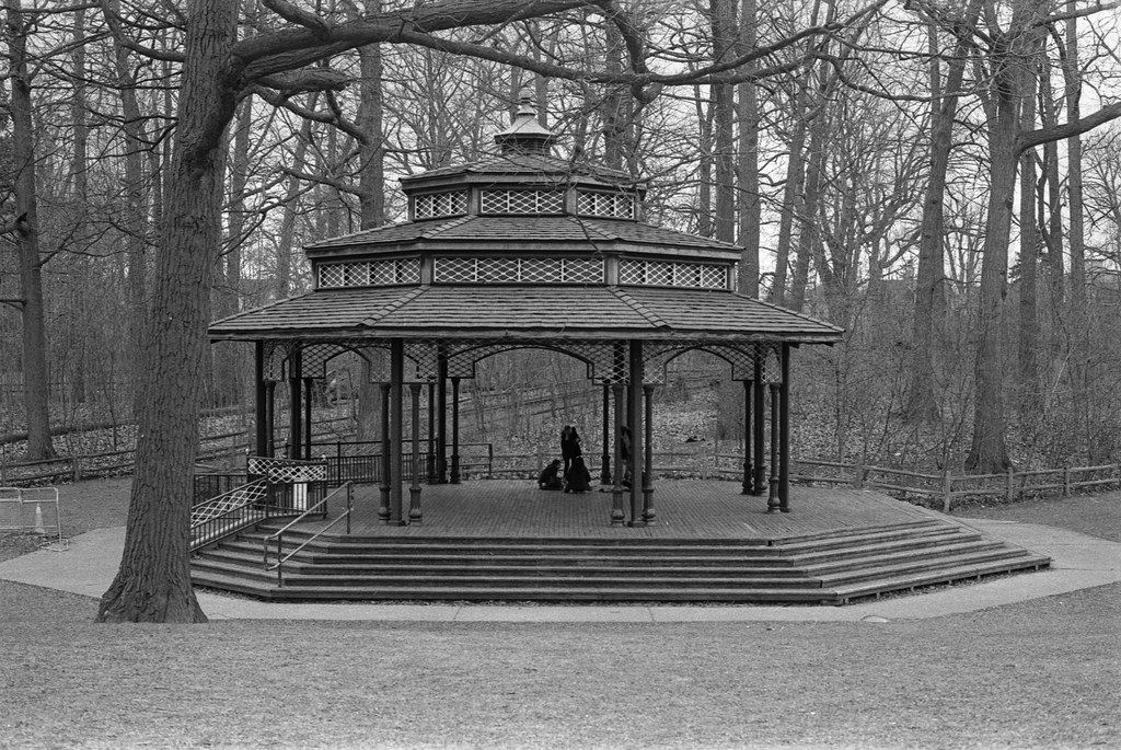Sheltering at the Kew Gardens Bandstand