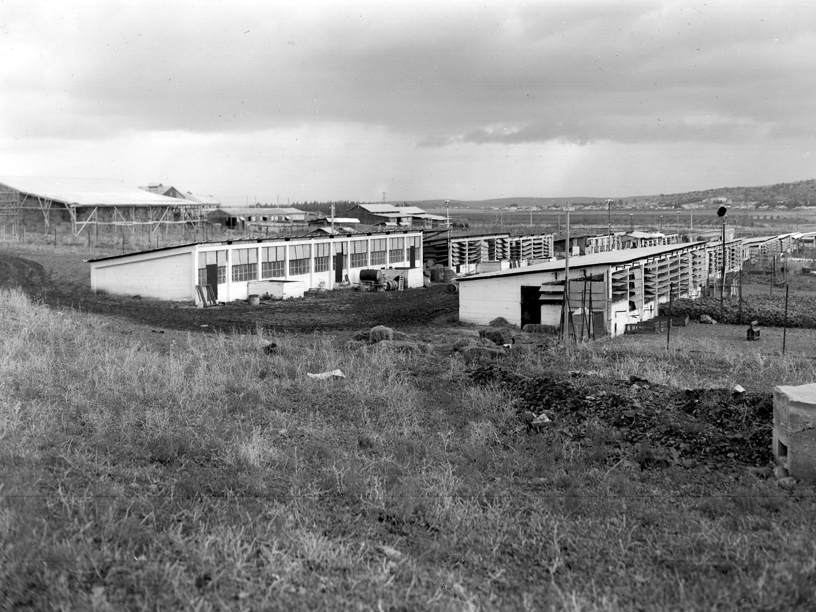 1938. Окрестности Хайфы.  Кибуц Ягур