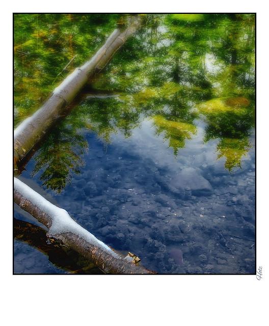 reflecting on the Adirondacks