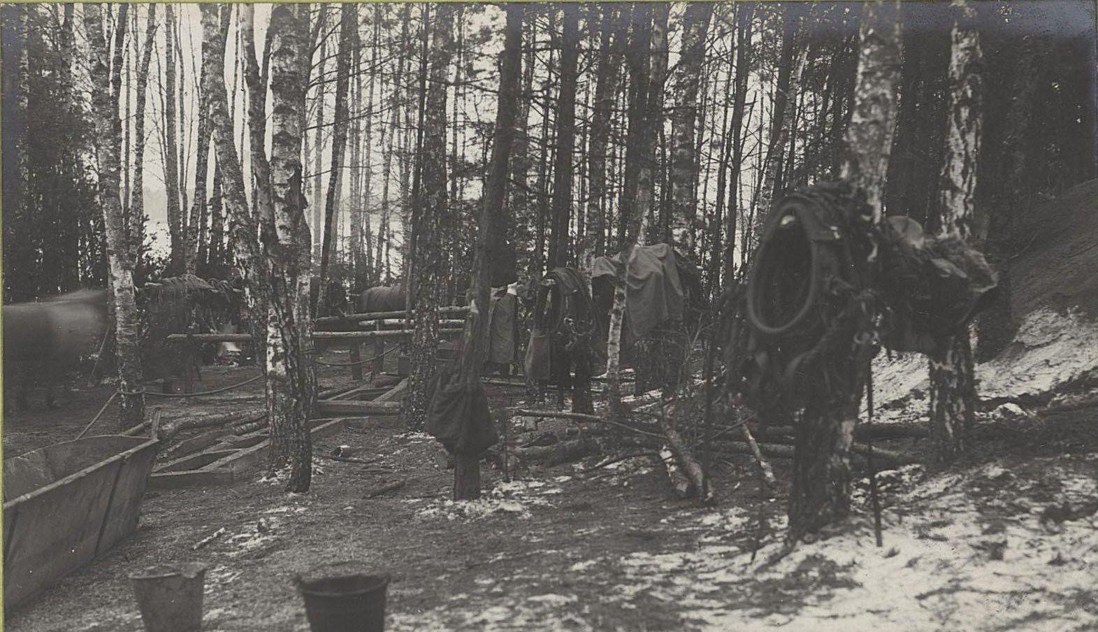 89. Скрытые в лесу передки 21-ой артиллерийской бригады на передовых позициях у деревни Мыслеборж