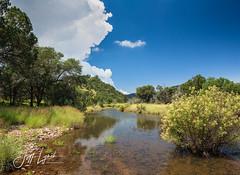 Davis Mountains Green - Jeff Davis County, Texas