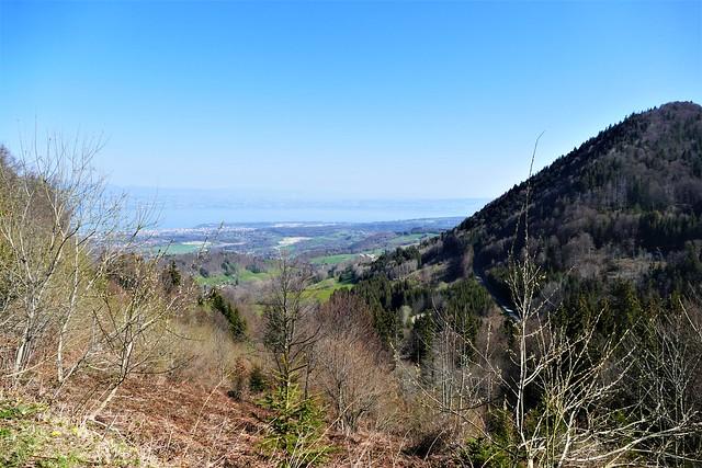 04.24.21.Panorama depuis « Le Col du Feu» (France)