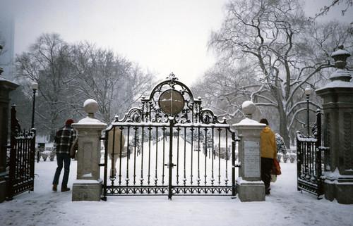 Public Garden Gate (1)