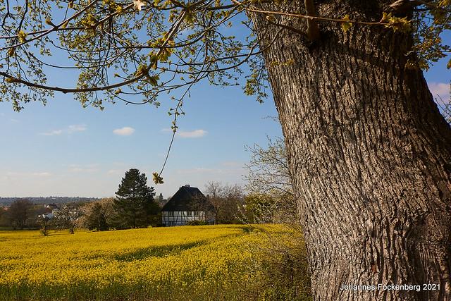 Bergisches Land im Frühling