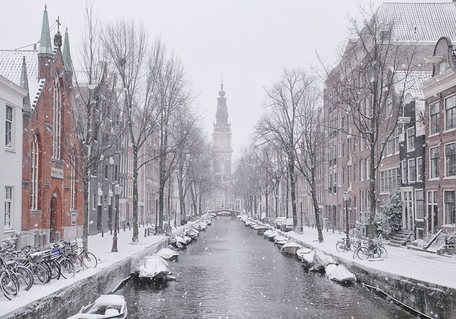 The idyllic beauty of the Zuiderkerk tower during snow storm Darcy