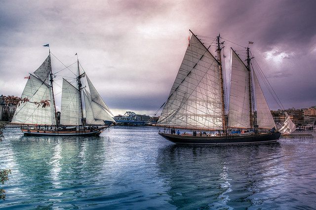 Tall Ships Arriving (VG)