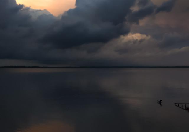 Sky_water_duck