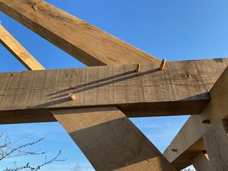 Principal rafter pegs
