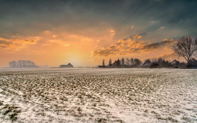 Farmhouses near Schoorldam, The Netherlands.