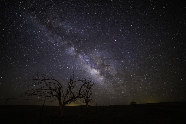 New Mexico Milkyway