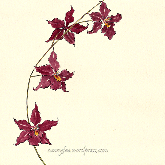 red orchid flower sketch 2
