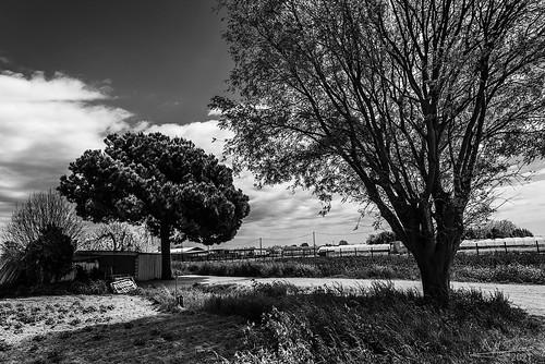 Shattered landscape