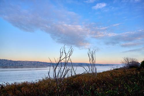 luminosity7 nikond850 launceston tasmania australia landscape wetlands tamarriver mist mistymorningbythetamar sunrise earlymorninglight colour sky clouds composition nature