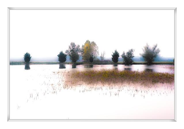 au bord de l eau 2