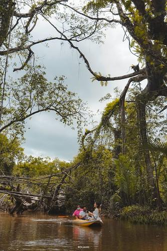 ผจญภัยธรรมชาติ ไปกับ Little Amazon