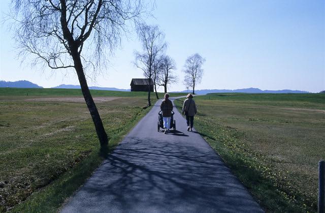 Spring Stroll  (FM3a / Ektachrome)
