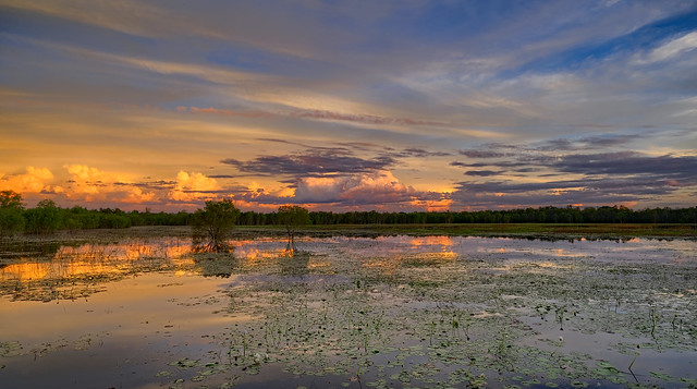 McMinns Lagoon sunset - 26 April 2021 - Darwin Rural Area, Northern Territory, Australia - Part 2