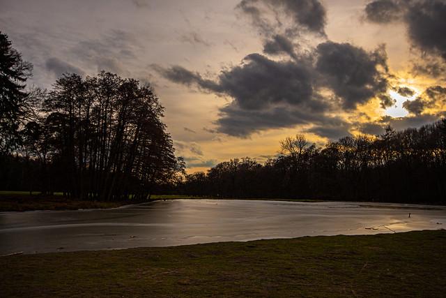 Wildpark At Sunset