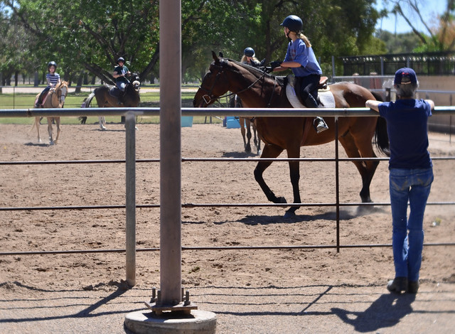 Canter And Trot