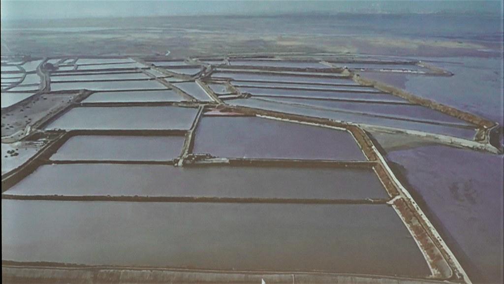 海精光電場位於彰化縣大城鄉沿海地區,現地為魚塭。拍攝會議簡報