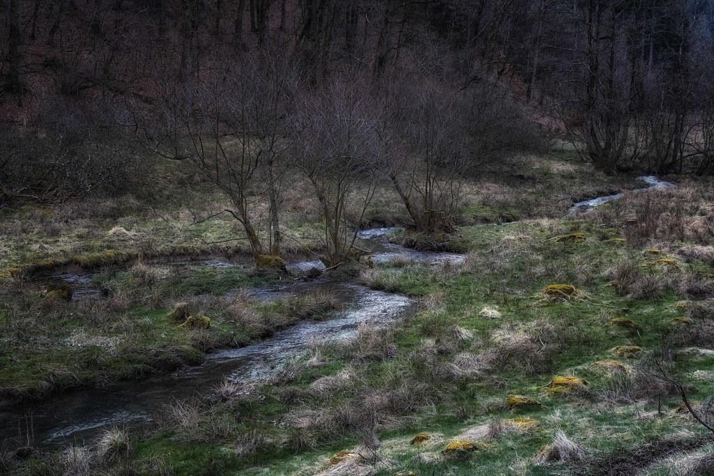 Serpentine Stream