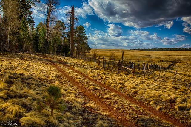 Big Lake Recreation Area, Greer, Arizona (Explore26Apr21)