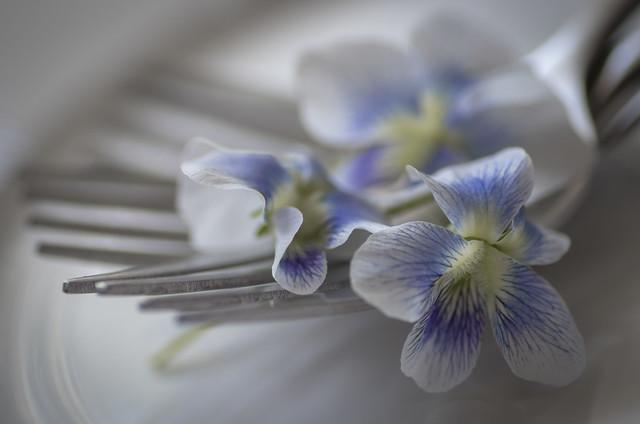 forks and violets