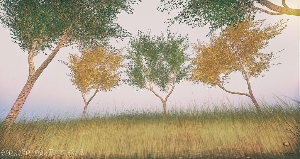 The Little Branch – Aspen Springs Trees v2 and v3 – UBER