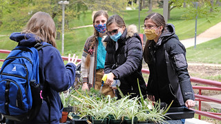 Eye on UMSL: Plant Sale: April 26, 2021