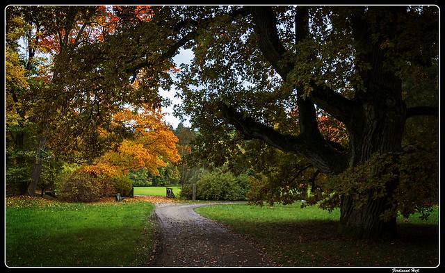 Pruhonice_Zámecký park_Chateau park_Central Bohemia_near Prague_Czechia