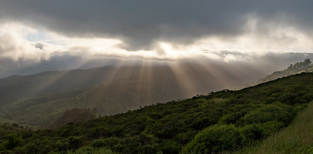 Sun trying to break through the misty fog obscuring Mt. Tamalpais