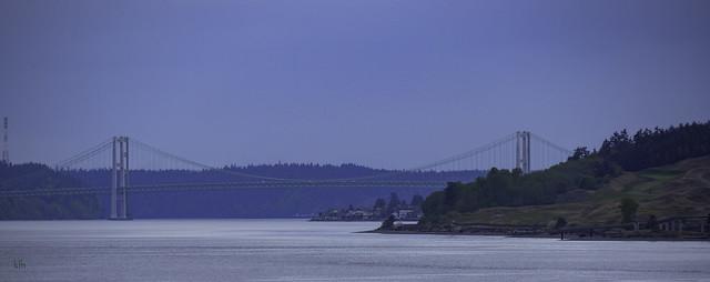 Tacoma Narrows Bridge as Seen from Steilacoom, Washington