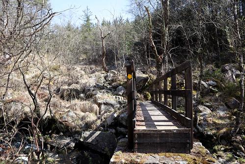 IMG_0616 bridge copy